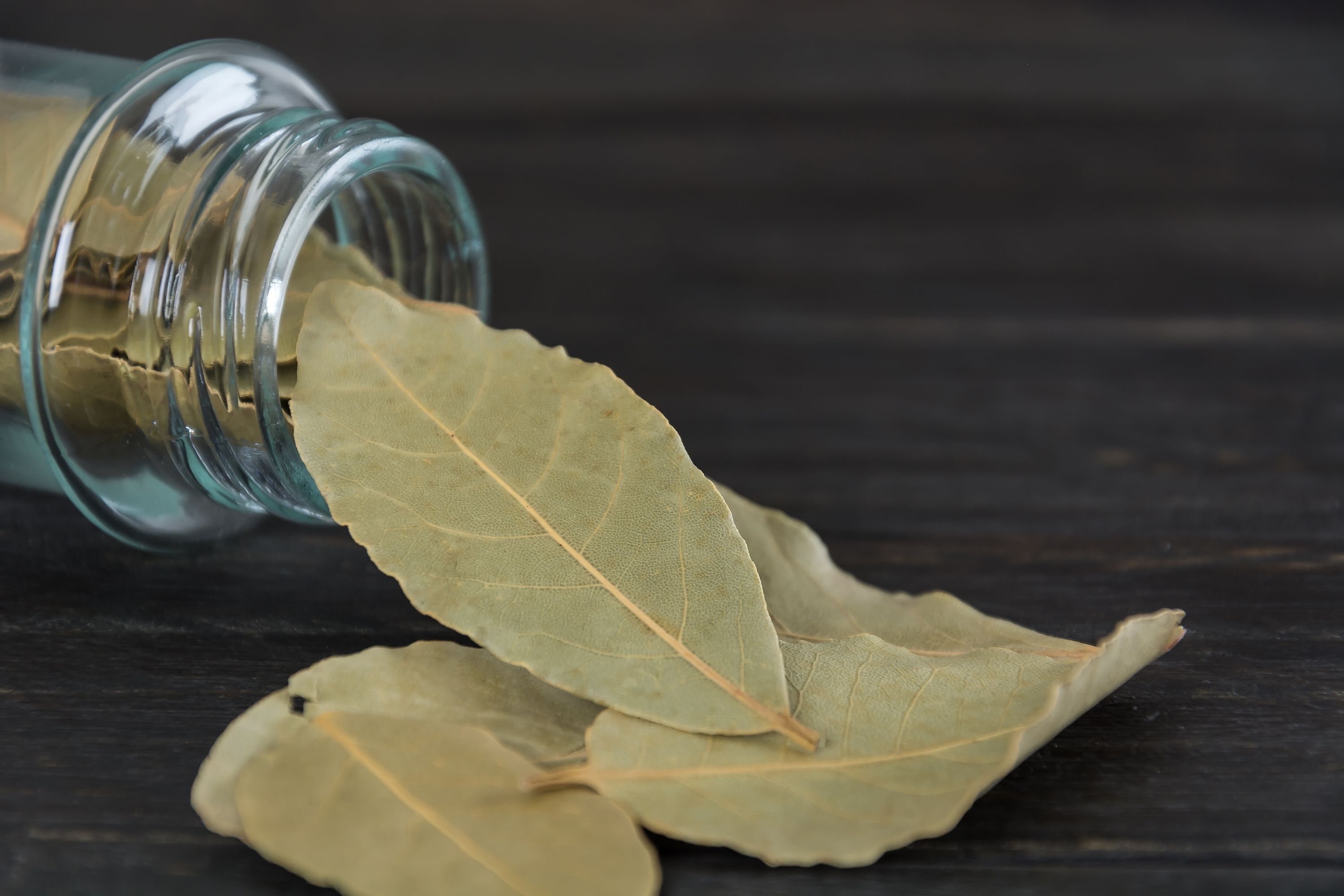 What's the Deal with Bay Leaves and Do You Actually Have to Use Them?